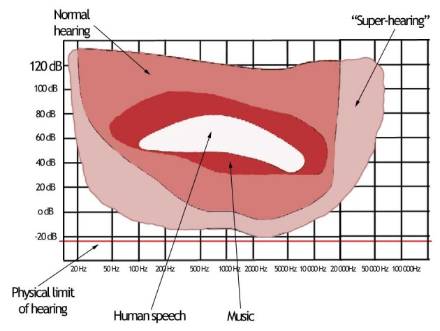 A model of super-hearing
